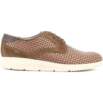 Obuća Muškarci  Derby cipele Soldini 19818 I S87 Smeđa