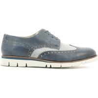 Obuća Muškarci  Derby cipele Lion 20942 Plava