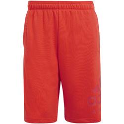 Odjeća Muškarci  Kupaći kostimi / Kupaće gaće adidas Originals CF9554 Crvena