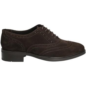 Obuća Žene  Derby cipele Marco Ferretti 140424 Smeđa