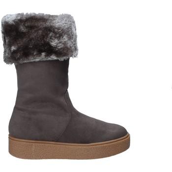 Obuća Žene  Čizme za snijeg Fornarina PI18RY1127S006 Siva