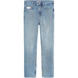 Odjeća Žene  Traperice ravnog kroja Tommy Jeans DW0DW08118 Plava