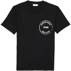 Odjeća Muškarci  Majice kratkih rukava Calvin Klein Jeans K10K104509 Crno