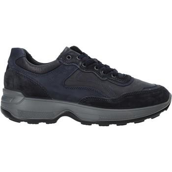 Obuća Muškarci  Niske tenisice IgI&CO 4114311 Plava