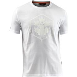 Odjeća Muškarci  Majice kratkih rukava Lumberjack CM60343 005 514 Bijela