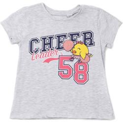 Odjeća Djeca Majice kratkih rukava Chicco 09006955000000 Siva
