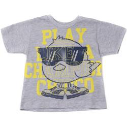 Odjeća Djeca Majice kratkih rukava Chicco 09006918000000 Siva