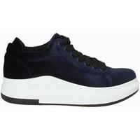 Obuća Žene  Niske tenisice Exé Shoes F17006688206 Plava