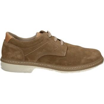 Obuća Muškarci  Derby cipele Enval 7885 Drugi