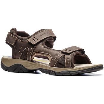 Obuća Muškarci  Sportske sandale Stonefly 108692 Smeđa
