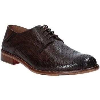 Obuća Muškarci  Derby cipele Exton 3102 Smeđa