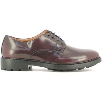 Obuća Muškarci  Derby cipele Marco Ferretti 111333MG Crvena