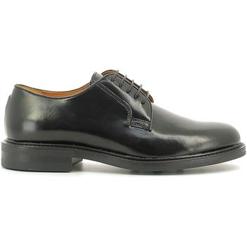 Obuća Muškarci  Derby cipele Rogers 1238B Crno