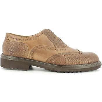 Obuća Muškarci  Derby cipele Rogers 2042B Smeđa