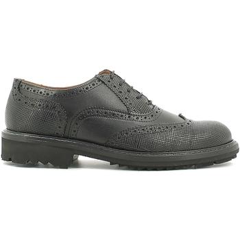 Obuća Muškarci  Derby cipele Rogers 2042B Crno