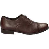 Obuća Muškarci  Derby cipele Geox U641XB 00085 Smeđa