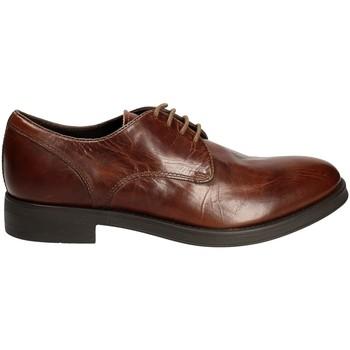 Obuća Muškarci  Derby cipele Geox U6482A 000FF Smeđa