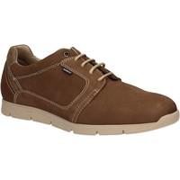 Obuća Muškarci  Derby cipele Baerchi 5080 Smeđa