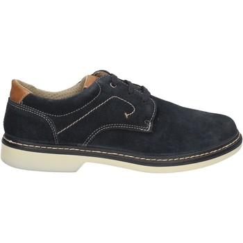 Obuća Muškarci  Derby cipele Enval 7885 Plava