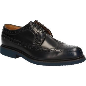 Obuća Muškarci  Derby cipele Soldini 20098 D V02 Plava