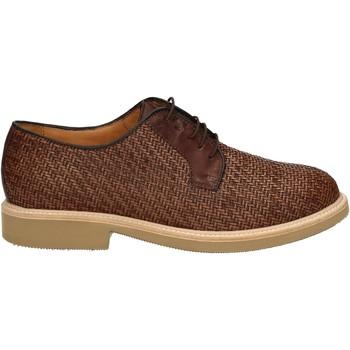 Obuća Muškarci  Derby cipele Soldini 20113 2 V05 Smeđa