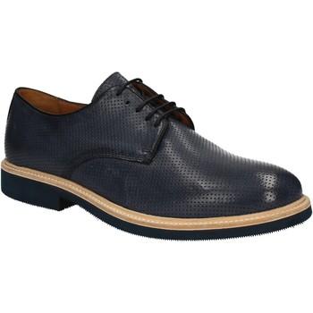 Obuća Muškarci  Derby cipele Soldini 20114 S V05 Plava