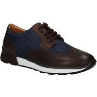 Obuća Muškarci  Derby cipele Soldini 20132 3 U72 Smeđa