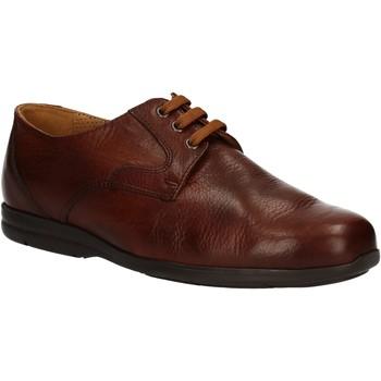 Obuća Muškarci  Derby cipele Fontana 5685-VI Smeđa