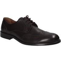 Obuća Muškarci  Derby cipele Maritan G 111240 Smeđa