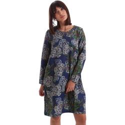 Odjeća Žene  Kratke haljine Gazel AB.AB.ML.0026 Plava