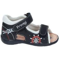 Obuća Djevojčica Sportske sandale Primigi 7006 Plava