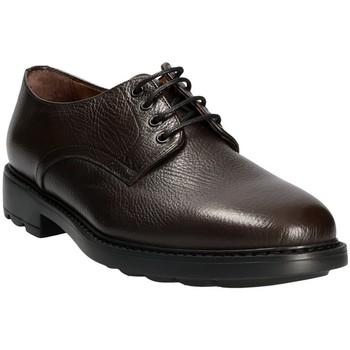 Obuća Muškarci  Derby cipele Maritan G 111333 Smeđa