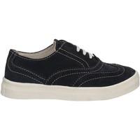 Obuća Djeca Derby cipele Didiblu D-3523 Plava