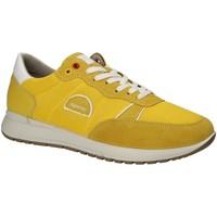 Obuća Muškarci  Niske tenisice IgI&CO 1120333 Žuta boja