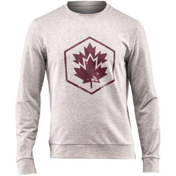 Odjeća Muškarci  Sportske majice Lumberjack CM60142 001 502 Siva