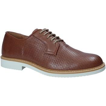 Obuća Muškarci  Derby cipele IgI&CO 1105122 Smeđa