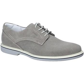 Obuća Muškarci  Derby cipele IgI&CO 1107644 Siva