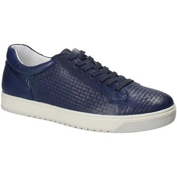 Obuća Muškarci  Niske tenisice IgI&CO 1125 Plava