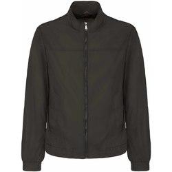 Odjeća Muškarci  Kratke jakne Geox M8221R T2466 Smeđa