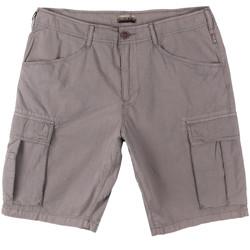 Odjeća Muškarci  Bermude i kratke hlače Napapijri N0YHF6 Siva