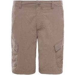 Odjeća Muškarci  Bermude i kratke hlače The North Face T0CF729ZG Bež