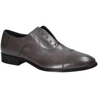 Obuća Muškarci  Derby cipele Soldini 19765 S Siva