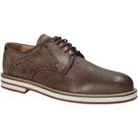 Obuća Muškarci  Derby cipele Exton 672 Smeđa