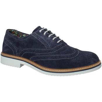 Obuća Muškarci  Derby cipele IgI&CO 1106 Plava