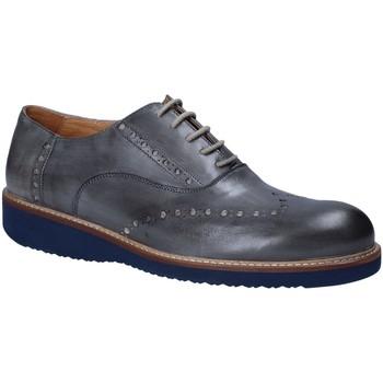 Obuća Muškarci  Derby cipele Exton 884 Siva