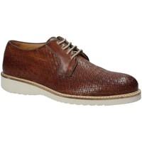 Obuća Muškarci  Derby cipele Exton 886 Smeđa