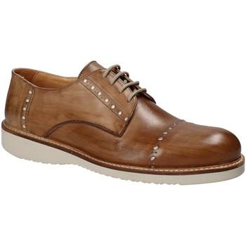 Obuća Muškarci  Derby cipele Exton 883 Smeđa