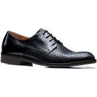Obuća Muškarci  Derby cipele Stonefly 110766 Plava