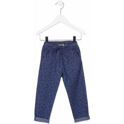 Odjeća Djeca Chino hlačei hlače mrkva kroja Losan 816-9010AD Plava