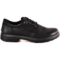 Obuća Muškarci  Derby cipele Enval 2223600 Crno